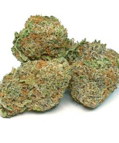 Green Crack weed